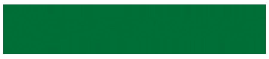 VIA NORDICA Logo